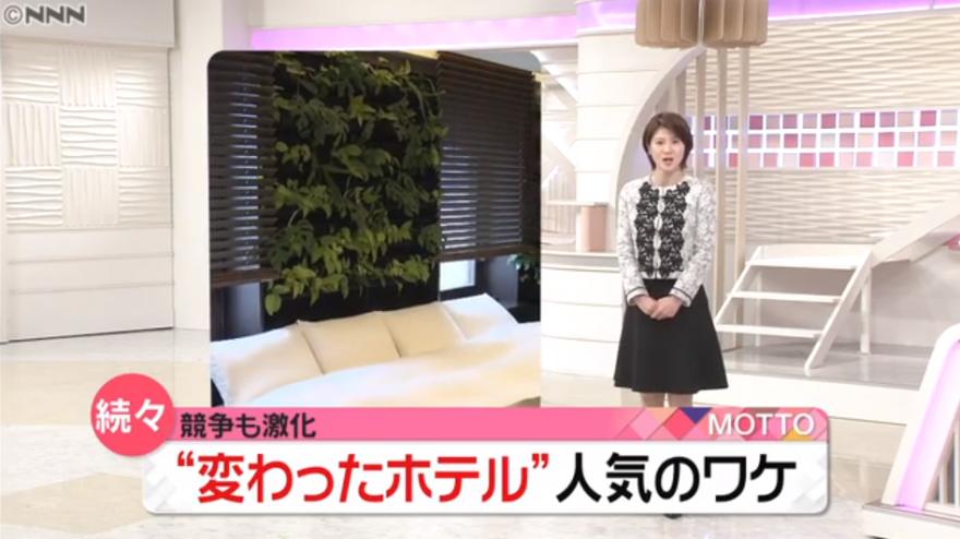 日本テレビ『news every.』で当ホテルが紹介されました!